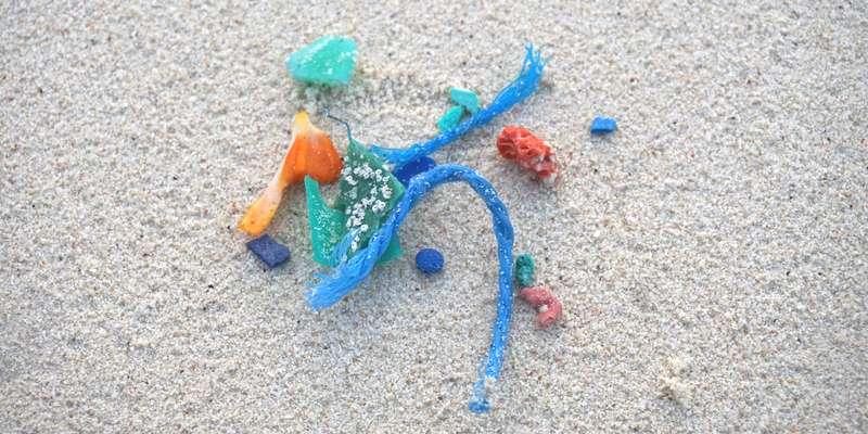 Mikroplastik Ozeankind