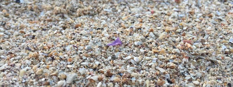 Mikroplastik im Sand