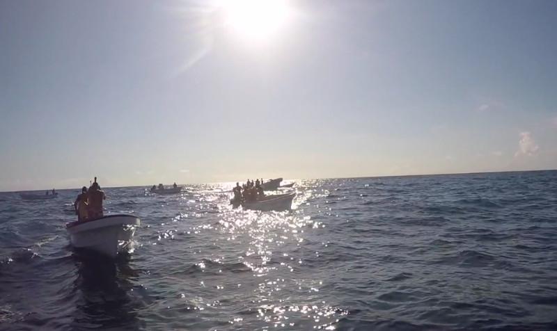 Delfintour Sansibar